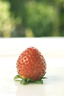 Free Strawberry Royalty Free Stock Photos - 965378
