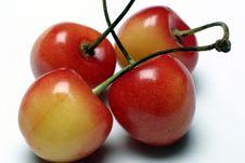 Free Sweet Cherry Royalty Free Stock Photos - 967118