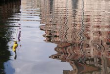 Free Reflections Stock Image - 969661