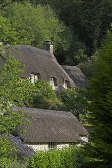 Free Thatched Cottages In Woods Royalty Free Stock Photo - 969725