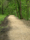 Free Path In Park Royalty Free Stock Photography - 9603747