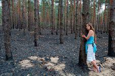 Free Burnt Stock Image - 9601971