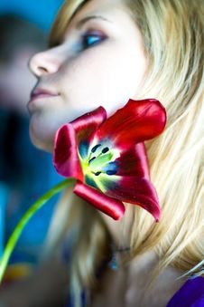 Girl With Red Tulip Royalty Free Stock Photo
