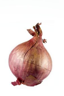 Free Red Onion Stock Images - 9604094