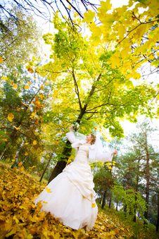 Free Bride In Autumn Stock Photo - 9606100