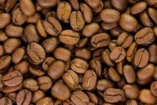 Free Coffee Grains Royalty Free Stock Images - 9608679