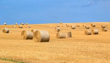Free Bales Of Straw Stock Images - 96055034
