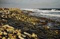 Free Dramatic Coastline Stock Image - 9613911