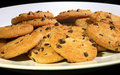 Free Plate Of Choc Chip Cookies Stock Photo - 9619580