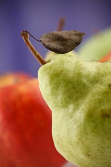 Free Pear With Leaflet One The Twig Stock Images - 9610254