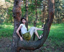 Free Wood Nymph Royalty Free Stock Photos - 9611468