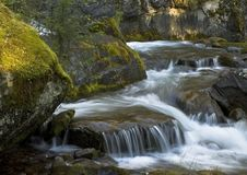 Mountain Creek Royalty Free Stock Image