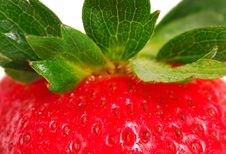 Free Close-up Of A Strawberry Royalty Free Stock Image - 9613516