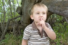 Free Hide And Seek Stock Image - 9613581