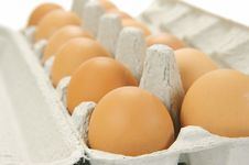 Free Free Range Eggs Stock Photos - 9619513
