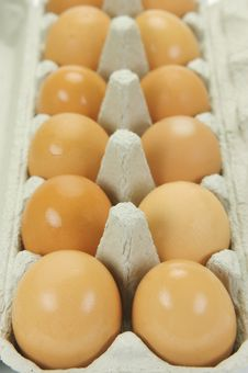 Free Range Eggs Stock Photos