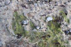 Free Stones On The Beach Stock Photos - 9619983