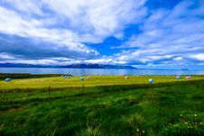 Free Green Field On Coast Royalty Free Stock Photos - 96113868