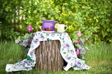 Free Table Setting In Garden Stock Photography - 96113912