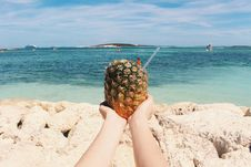 Free Tropical Drinks On A Beach Royalty Free Stock Photography - 96114597