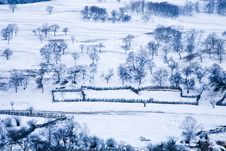 Free Meadow Under Snow Stock Image - 9624011