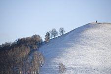 Free Meadow Under Snow Stock Photos - 9625283