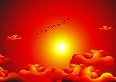 Free Flock In The Sunset Royalty Free Stock Image - 9625366