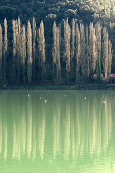Free Reflections On The Lake Royalty Free Stock Image - 9625766