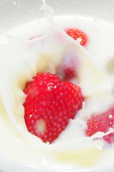 Free Strawberry Splash Royalty Free Stock Images - 9626379