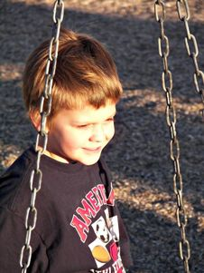 Free Boy On A Tire Swing Royalty Free Stock Image - 9627066