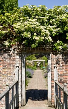 Free Barrington Court Walled Garden Stock Image - 9627241