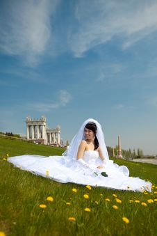 Free Pretty Bride Royalty Free Stock Photography - 9627927