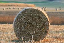 Free Rolls Of Hay Stock Images - 9628234