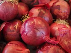 Free Red Onions Stock Photography - 96215312