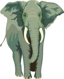 Free Elephant, Elephants And Mammoths, Indian Elephant, Terrestrial Animal Stock Photography - 96244632