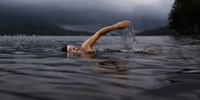 Free Swimmer Lake Royalty Free Stock Photography - 96290427
