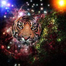 Free Cosmic Tiger Royalty Free Stock Image - 96290576