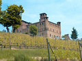 Free Grinzane Cavour Castle Royalty Free Stock Image - 9630846