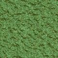 Free Green Metallic Surface Royalty Free Stock Photos - 9631138