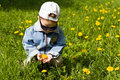 Free The Boy-dandelion 2 Royalty Free Stock Images - 9634969