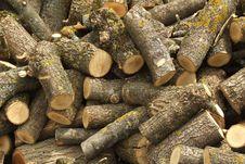 Free Oak Round Logs Royalty Free Stock Photo - 9630315