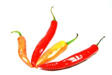 Free Chilies Royalty Free Stock Photography - 9632197