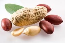 Free Peanut With Pods Stock Image - 9632991