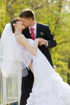 Free Marriage Royalty Free Stock Photo - 9635495