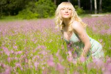 Free Woman In Pink Flowers Stock Photography - 9637932