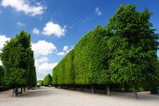 Free Garden Of Schönbrunn Palace Stock Photography - 9639842