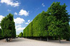 Garden Of Schönbrunn Palace Stock Photography
