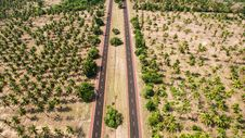 Free Aerial Photo Of Two Gray Roads Surrounded By Trees Stock Image - 96365171