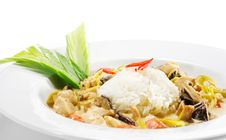 Thai Dishes - WOK Chicken Royalty Free Stock Images