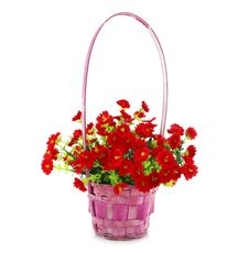 Free Hanging Basket With Flowers Isolated Royalty Free Stock Photos - 9642818